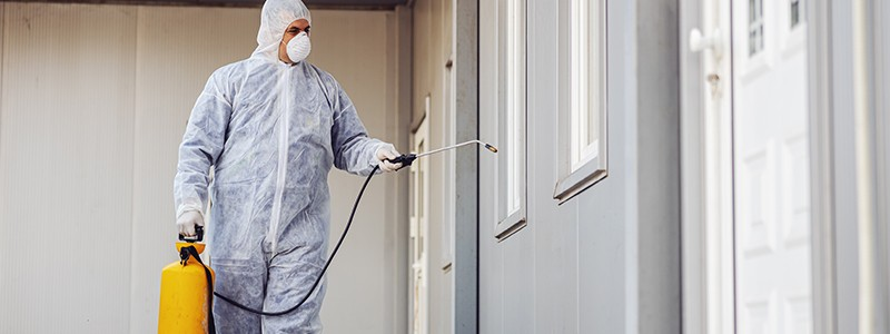 Quality Pest Control Services in Hooghly