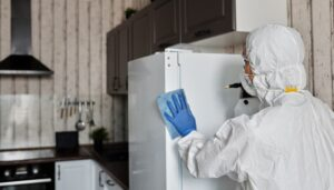 disinfect your home